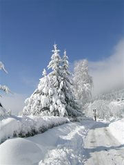 Winterlandschaft Ossichersee
